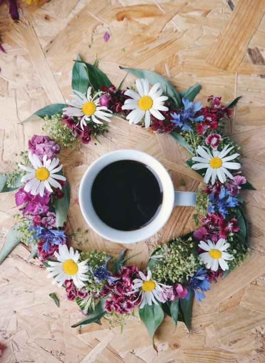 black coffee caffeine chamomile close up